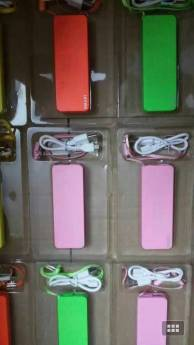 Powerbank (166)