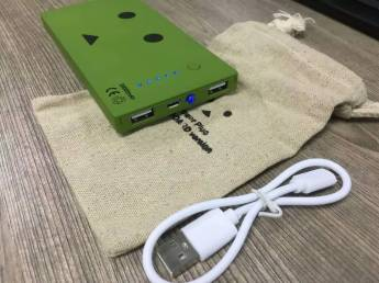 Powerbank (262)