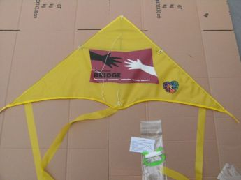 Воздушный змей с логотипом Фото 31