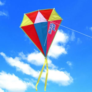 Воздушный змей с логотипом Фото 32