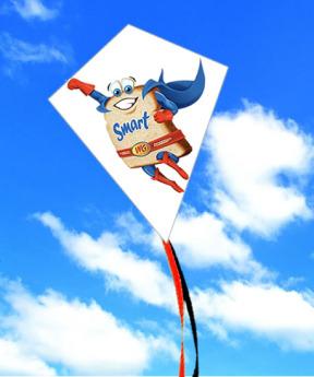Воздушный змей с логотипом Фото 33