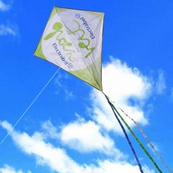 Воздушный змей с логотипом Фото 34