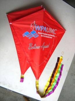 Воздушный змей с логотипом Фото 36
