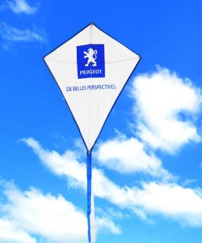 Воздушный змей с логотипом Фото 38