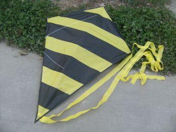 Воздушный змей с логотипом Фото 40