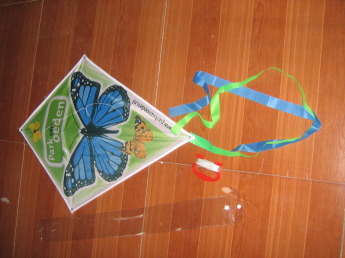 Воздушный змей с логотипом Фото 51