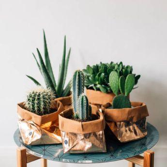 Непромокаемый бумажный цветочный горшок или ваза Фото 12