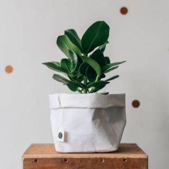 Непромокаемый бумажный цветочный горшок или ваза Фото 15