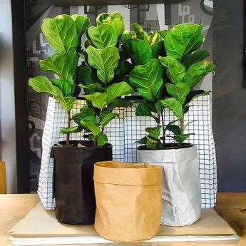 Непромокаемый бумажный цветочный горшок или ваза Фото 9